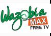 Wazobia Max
